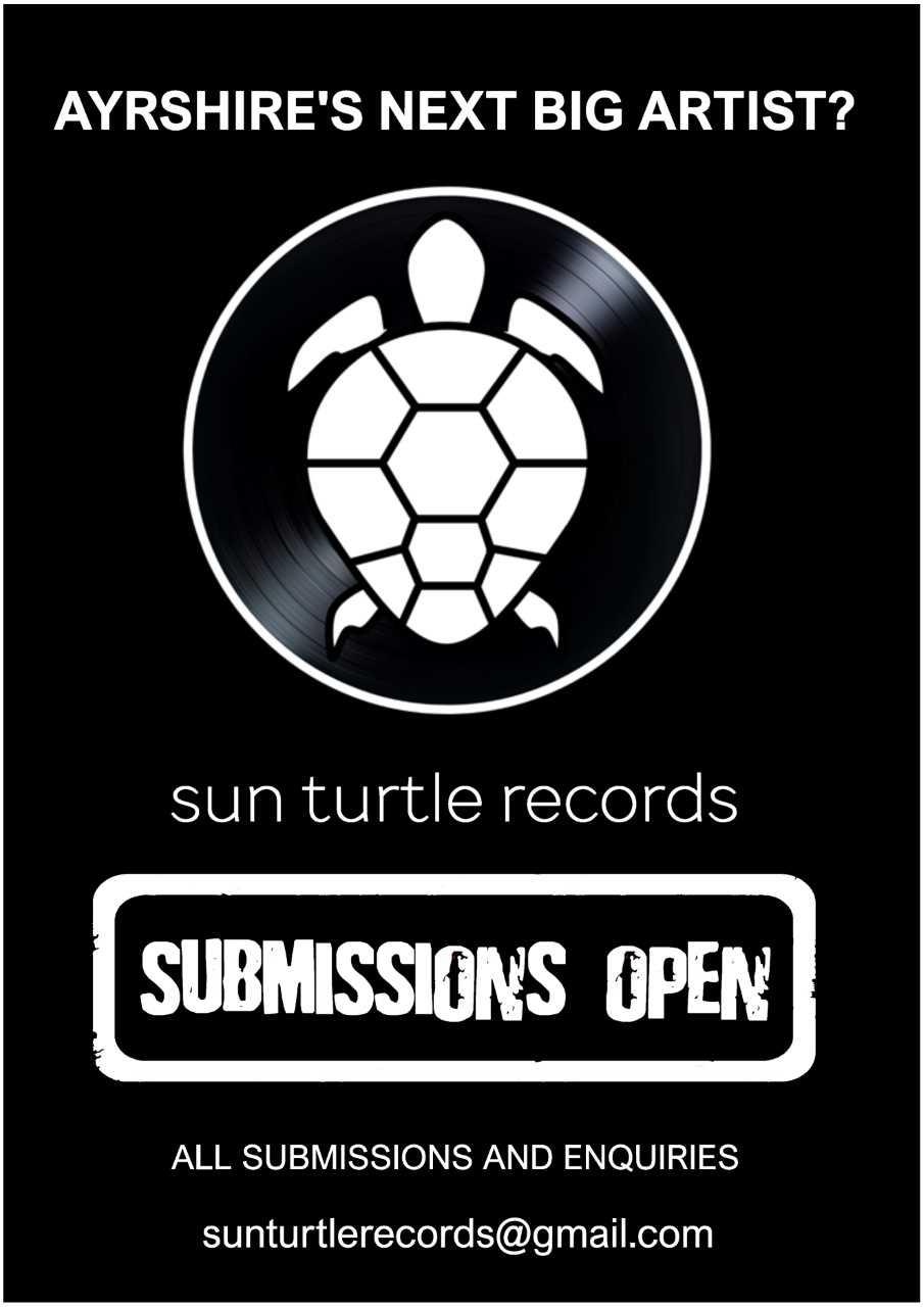 sun turtle back & white